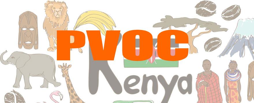 肯尼亚PVOC办理流程与费用