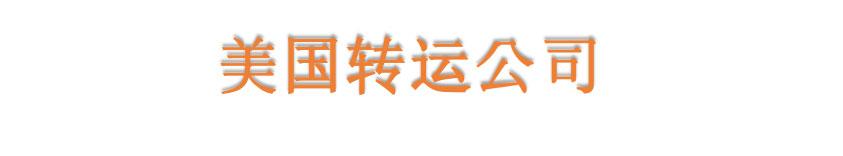 中国到美国转运物流公司