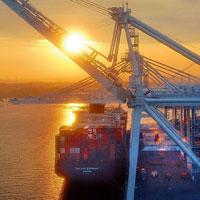 国际海运进口